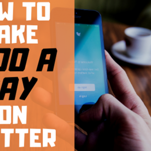 How to Make Money on Twitter (REVEALED: $100 a Day on Twitter Plan)
